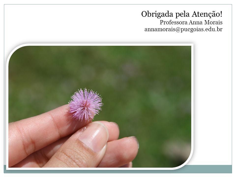 Obrigada pela Atenção. Professora Anna Morais annamorais@pucgoias. edu