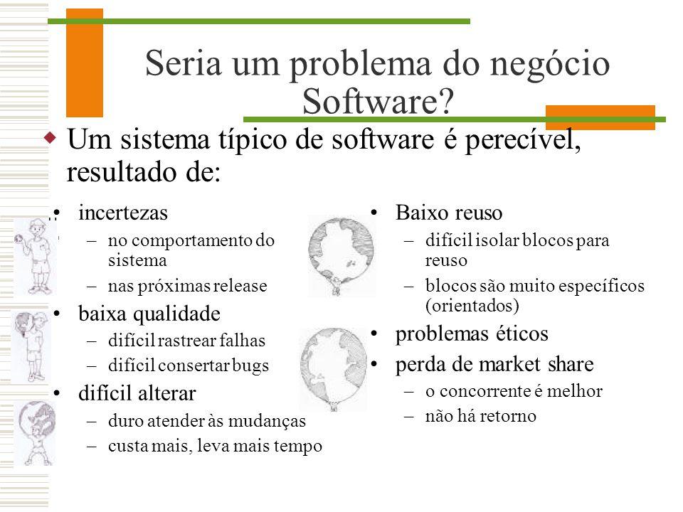 Seria um problema do negócio Software