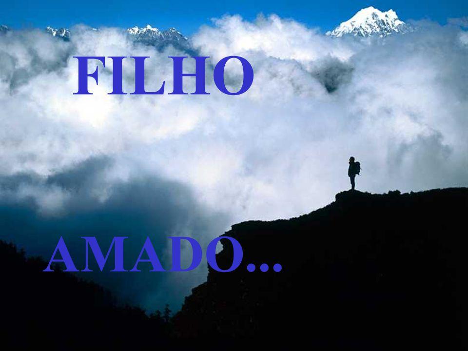 FILHO AMADO...