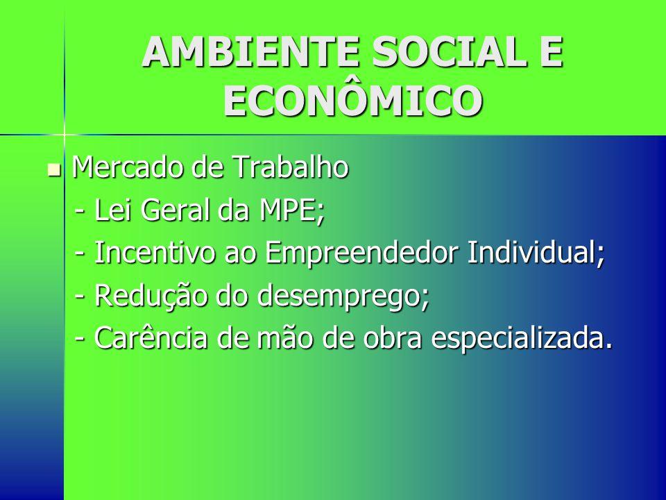 AMBIENTE SOCIAL E ECONÔMICO