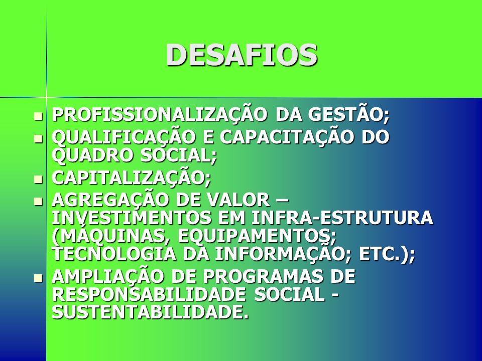 DESAFIOS PROFISSIONALIZAÇÃO DA GESTÃO;