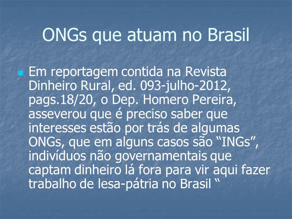 ONGs que atuam no Brasil