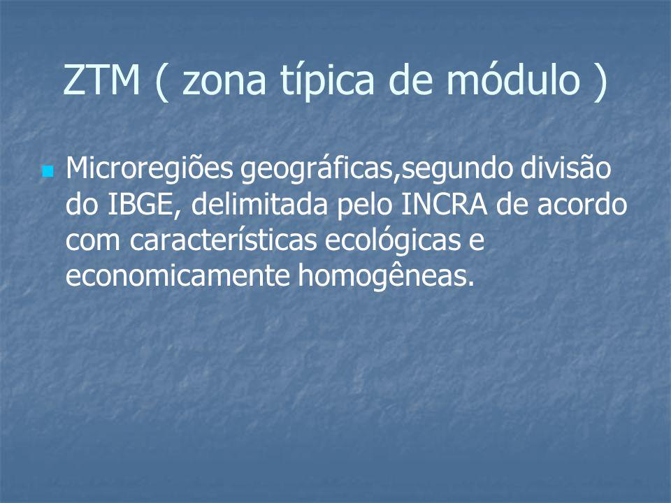 ZTM ( zona típica de módulo )