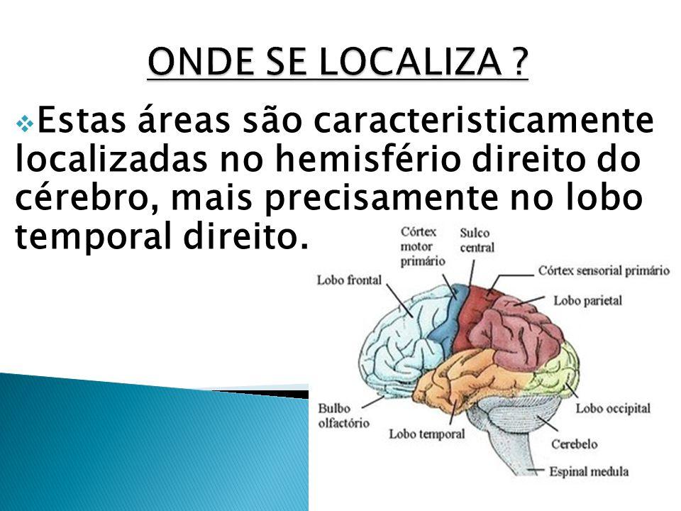 ONDE SE LOCALIZA Estas áreas são caracteristicamente localizadas no hemisfério direito do cérebro, mais precisamente no lobo temporal direito.