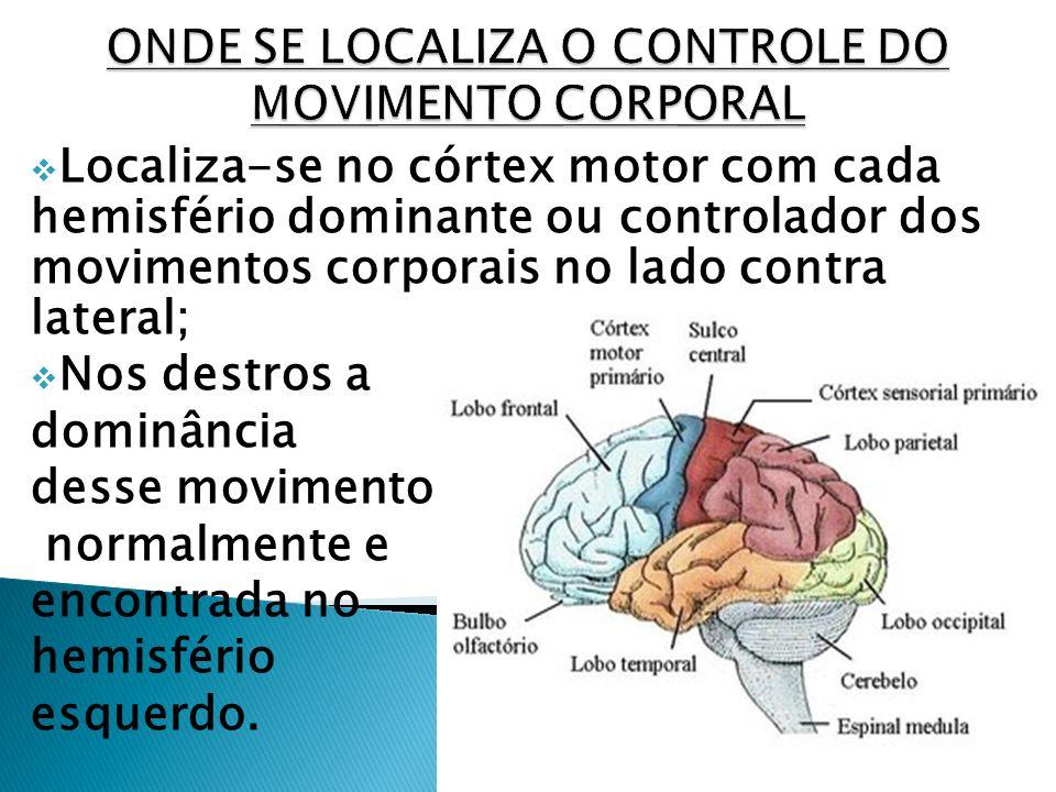 ONDE SE LOCALIZA O CONTROLE DO MOVIMENTO CORPORAL