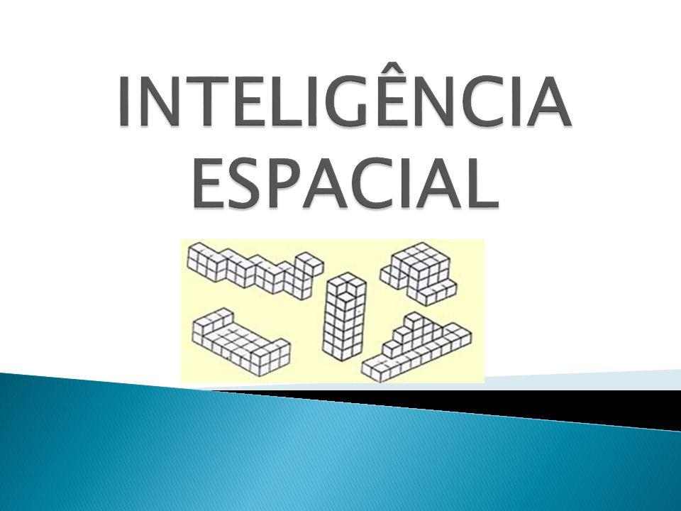 INTELIGÊNCIA ESPACIAL