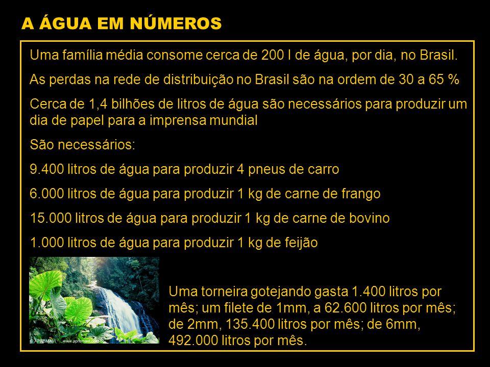 A ÁGUA EM NÚMEROS Uma família média consome cerca de 200 l de água, por dia, no Brasil.