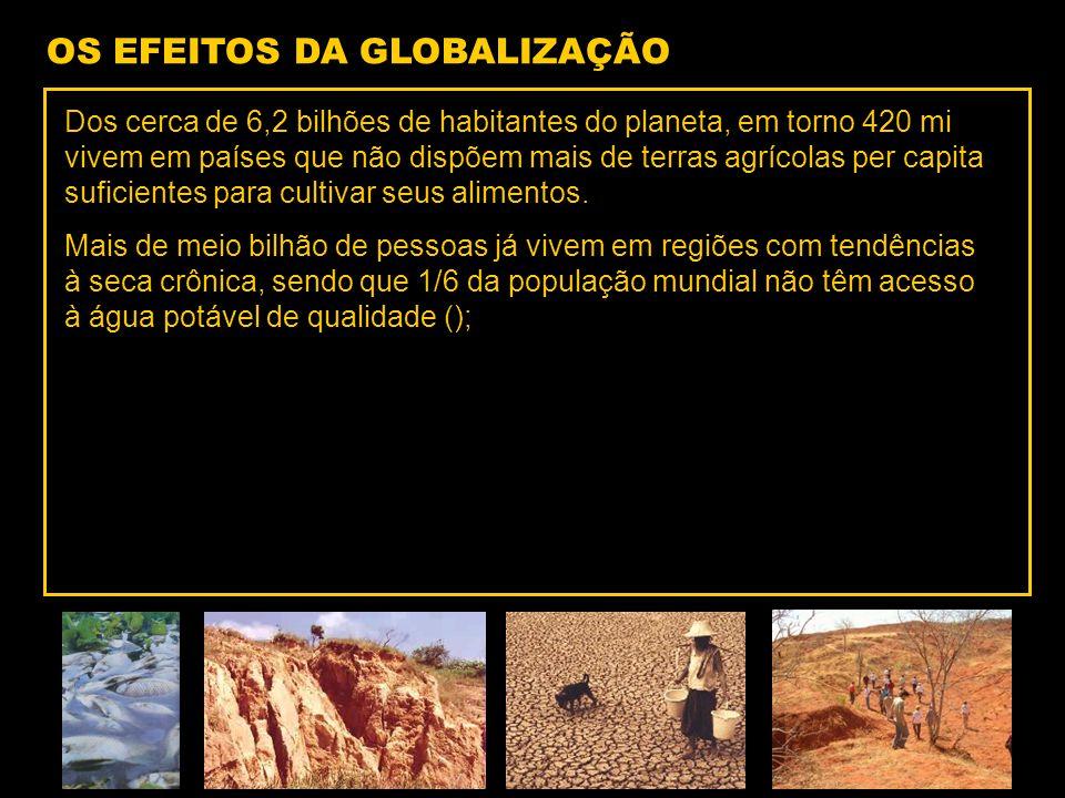 OS EFEITOS DA GLOBALIZAÇÃO