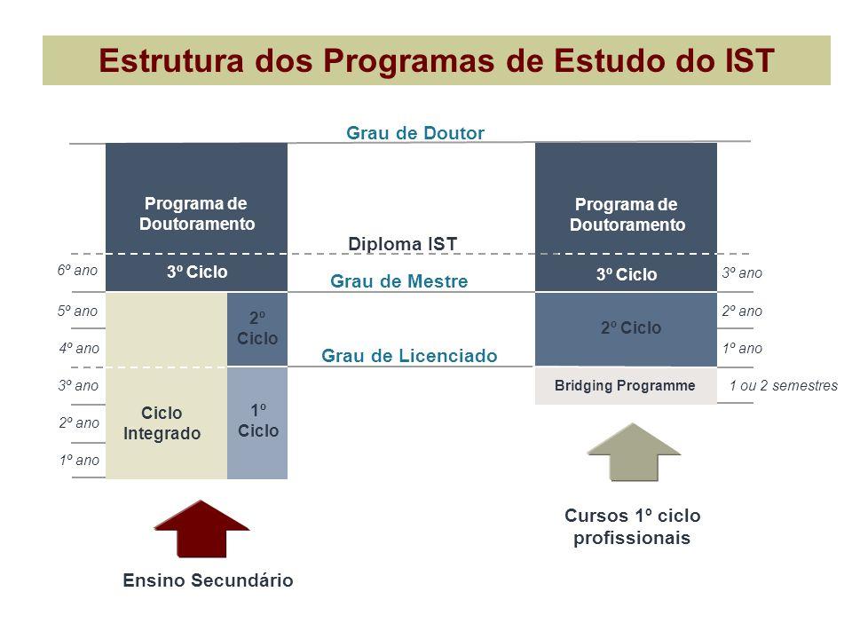 Estrutura dos Programas de Estudo do IST Cursos 1º ciclo profissionais