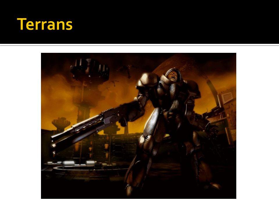 Terrans