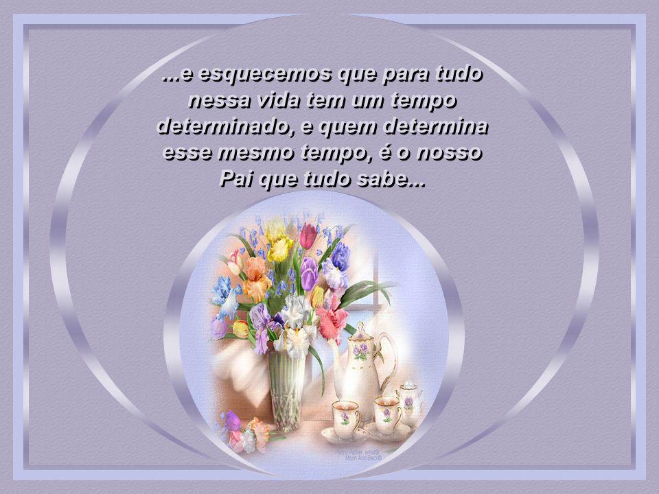 ...e esquecemos que para tudo nessa vida tem um tempo determinado, e quem determina esse mesmo tempo, é o nosso Pai que tudo sabe...
