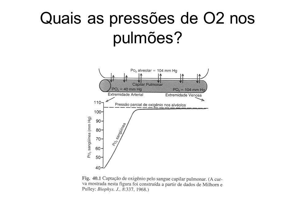 Quais as pressões de O2 nos pulmões