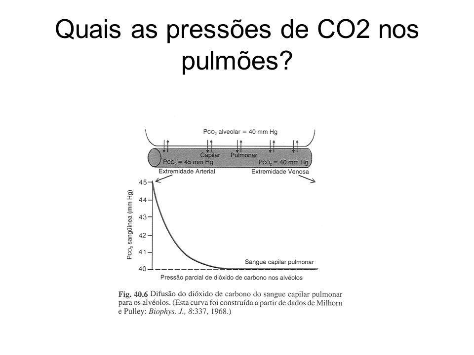 Quais as pressões de CO2 nos pulmões