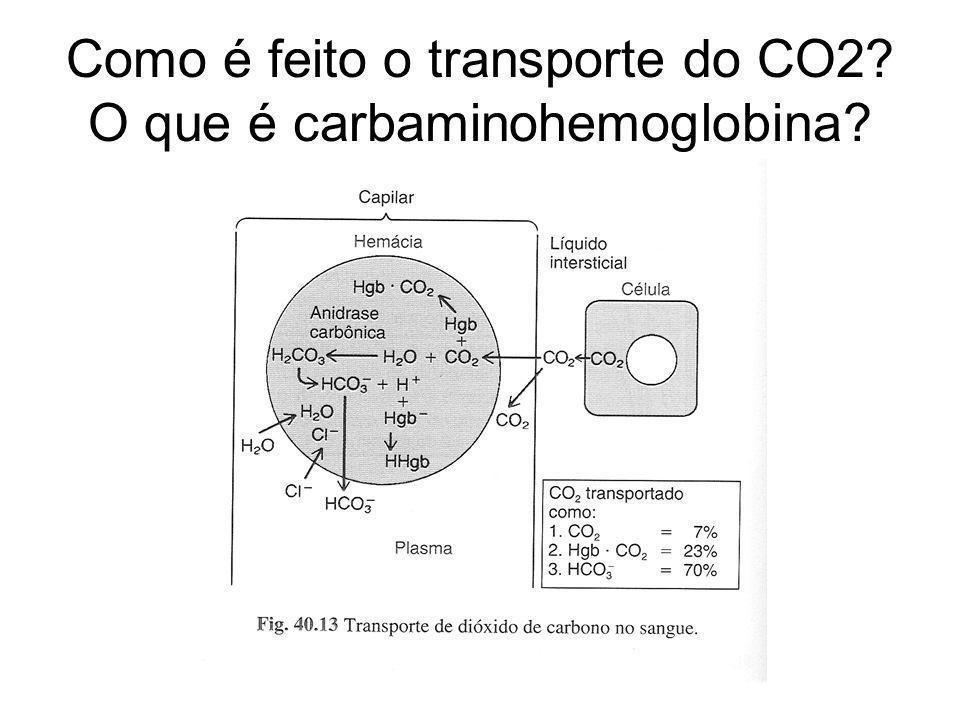 Como é feito o transporte do CO2 O que é carbaminohemoglobina