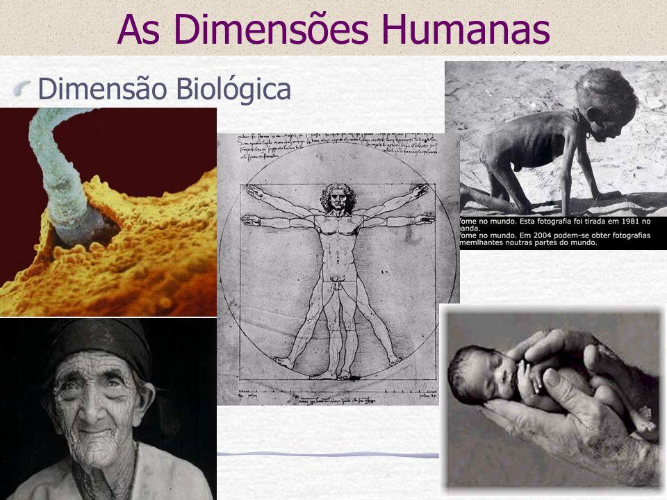 As Dimensões Humanas Dimensão Biológica
