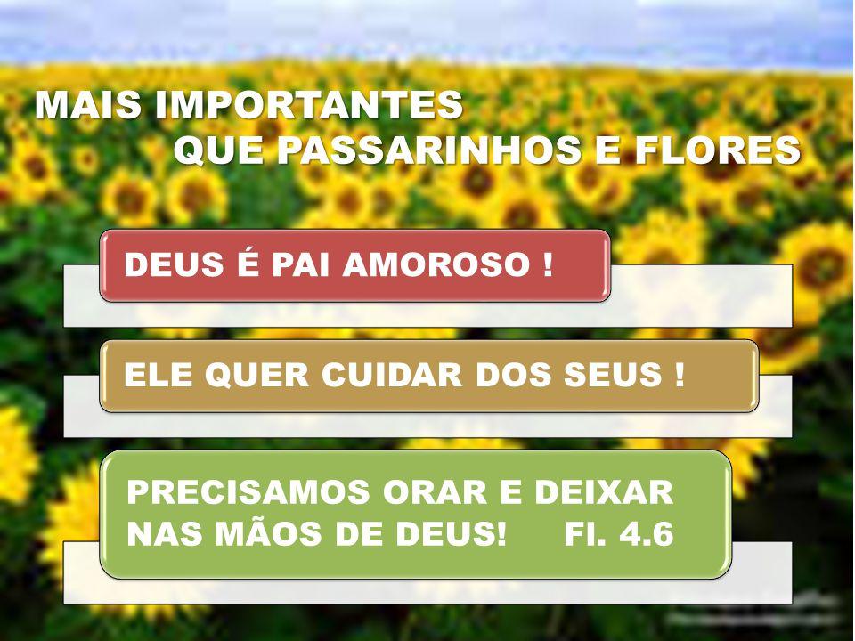 QUE PASSARINHOS E FLORES