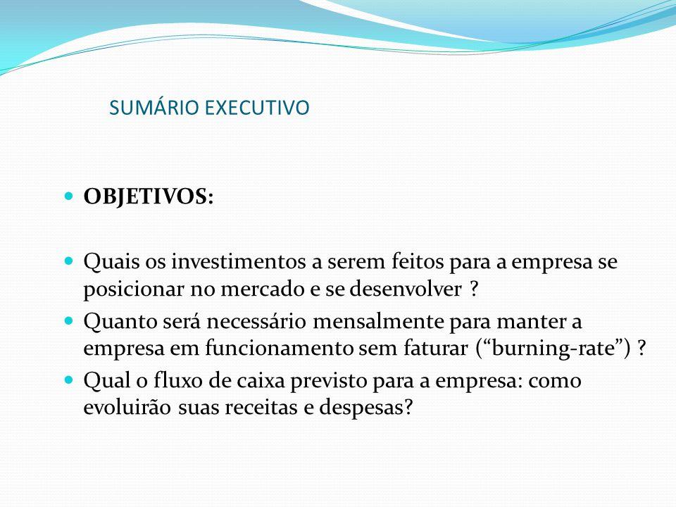 SUMÁRIO EXECUTIVO OBJETIVOS: Quais os investimentos a serem feitos para a empresa se posicionar no mercado e se desenvolver
