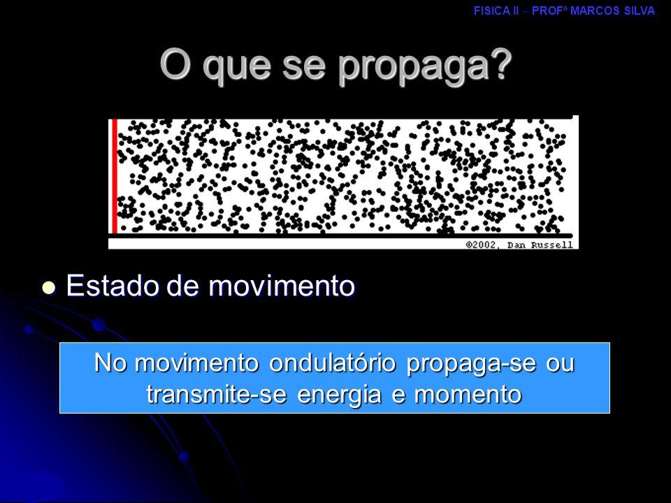 No movimento ondulatório propaga-se ou transmite-se energia e momento