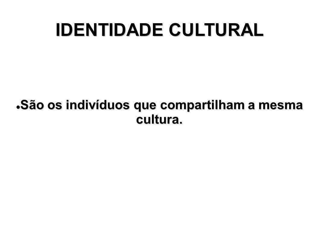 São os indivíduos que compartilham a mesma cultura.