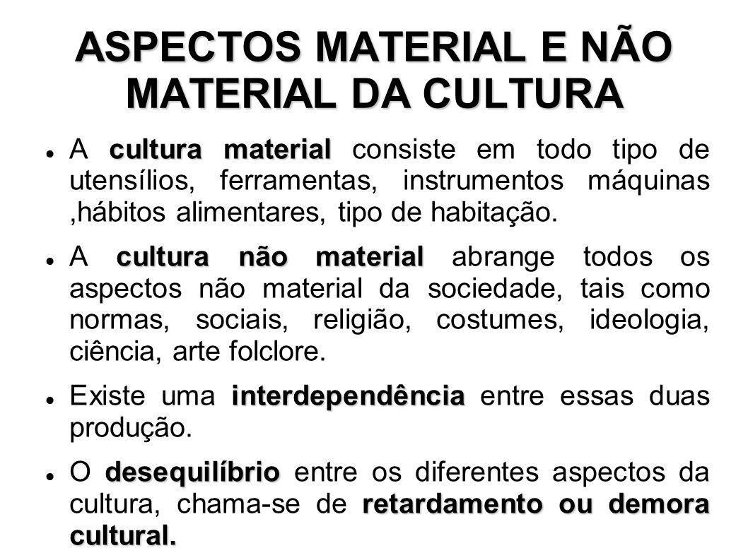 ASPECTOS MATERIAL E NÃO MATERIAL DA CULTURA