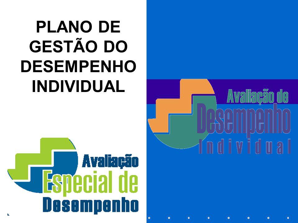 PLANO DE GESTÃO DO DESEMPENHO INDIVIDUAL