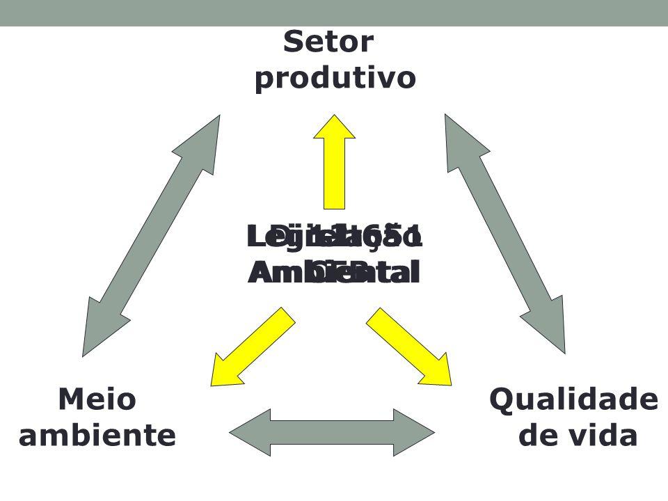 Setor produtivo Direito Ambiental. Legislação Ambiental. Lei 12.651 CFB. Meio. ambiente. Qualidade.