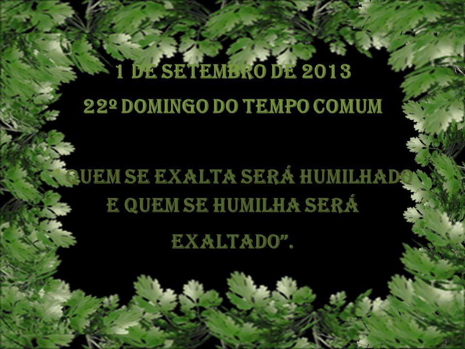 22º Domingo do Tempo Comum