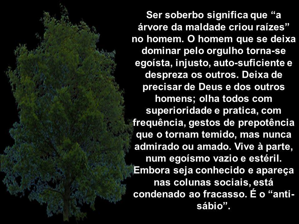 Ser soberbo significa que a árvore da maldade criou raízes no homem