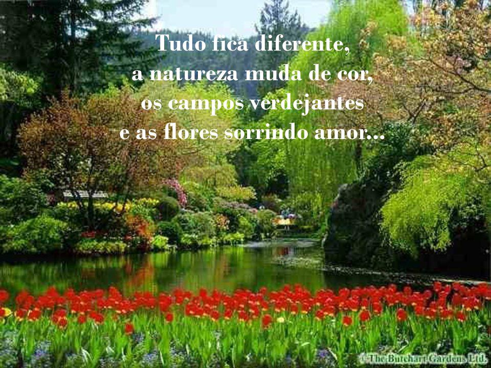 e as flores sorrindo amor...