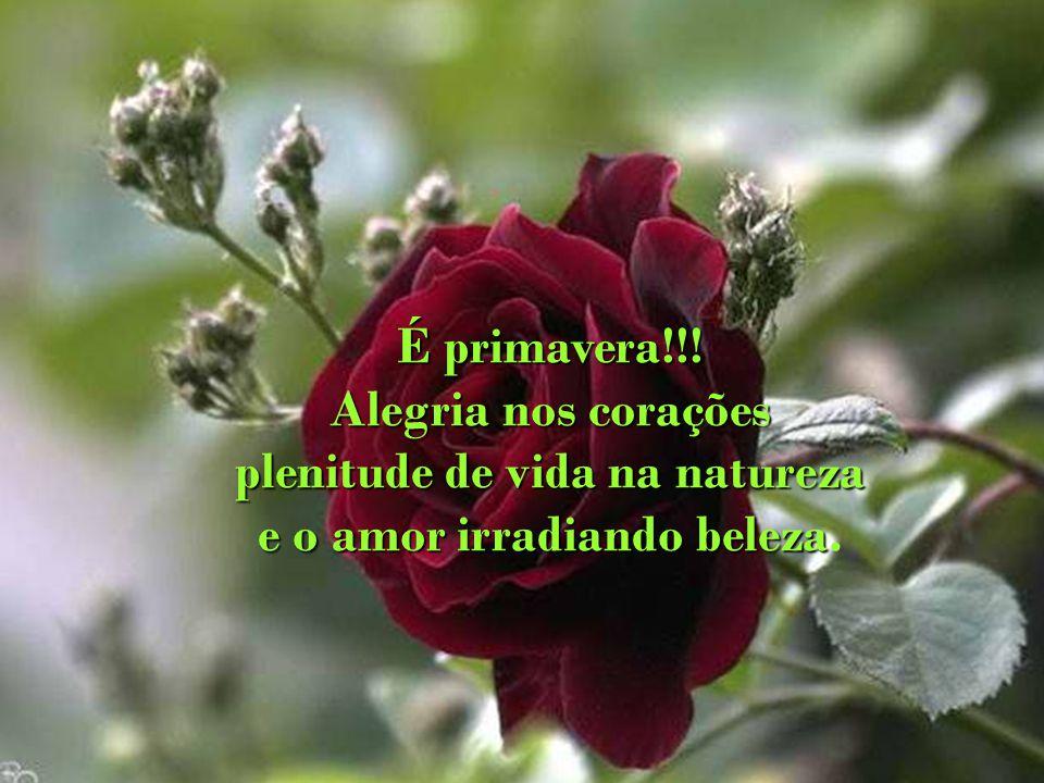 plenitude de vida na natureza e o amor irradiando beleza.