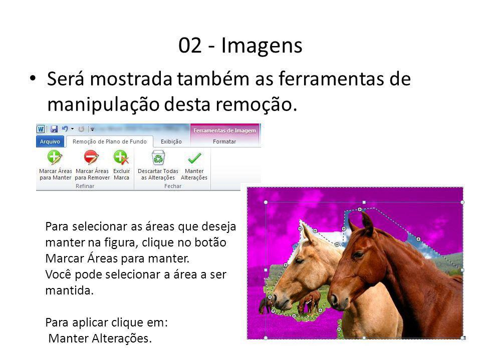 02 - Imagens Será mostrada também as ferramentas de manipulação desta remoção.