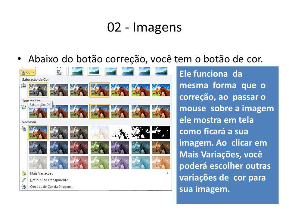02 - Imagens Abaixo do botão correção, você tem o botão de cor.