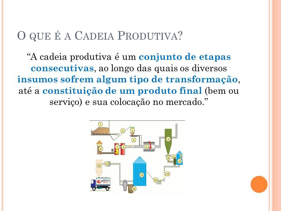 O que é a Cadeia Produtiva