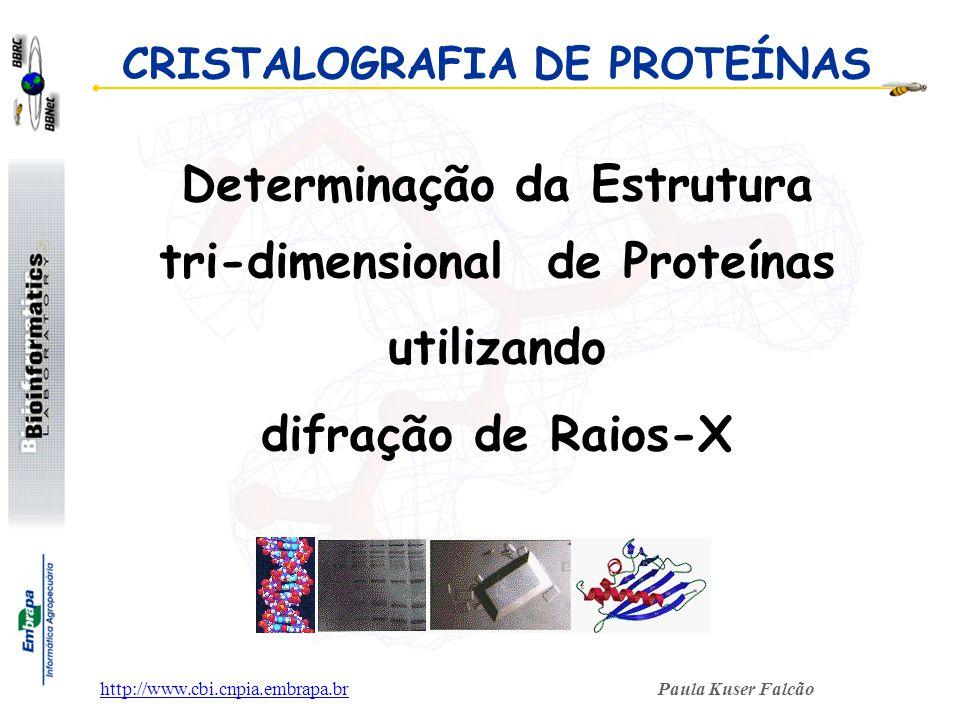 Determinação da Estrutura tri-dimensional de Proteínas utilizando