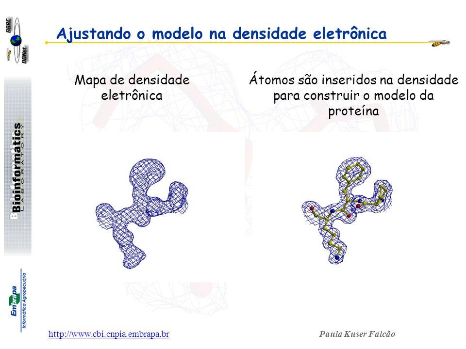 Ajustando o modelo na densidade eletrônica