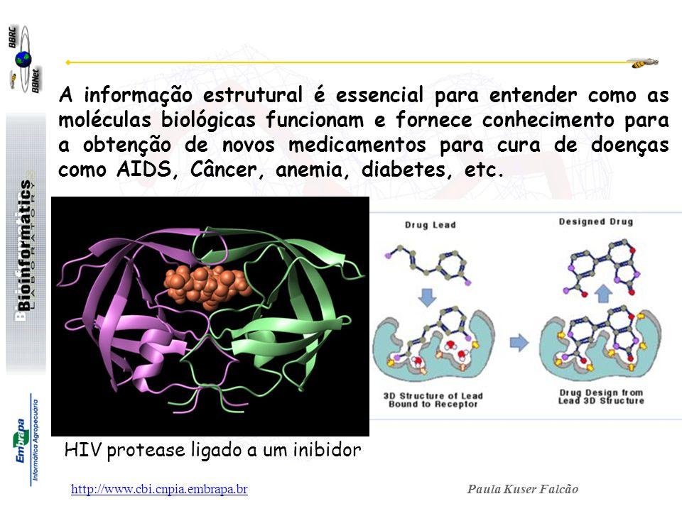 A informação estrutural é essencial para entender como as moléculas biológicas funcionam e fornece conhecimento para a obtenção de novos medicamentos para cura de doenças como AIDS, Câncer, anemia, diabetes, etc.