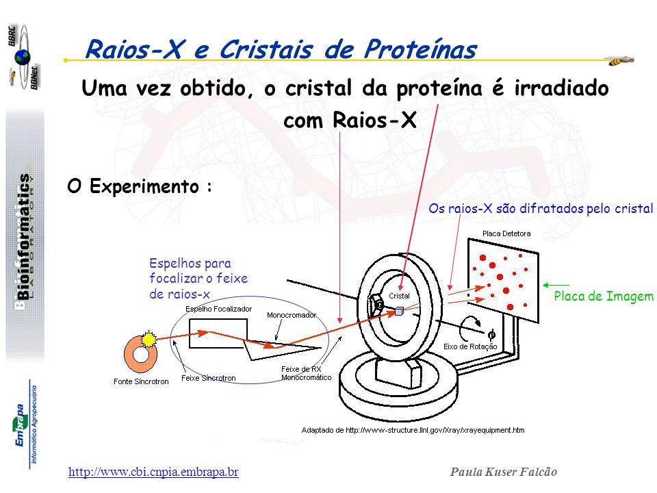 Raios-X e Cristais de Proteínas