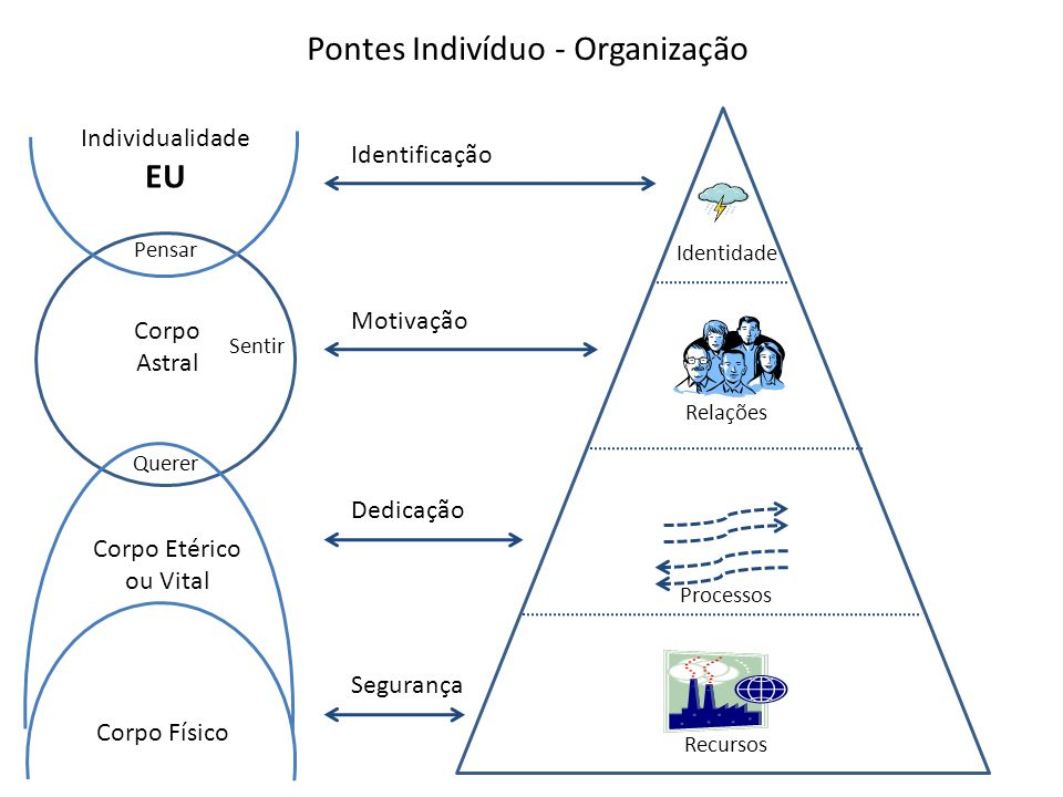 Pontes Indivíduo - Organização