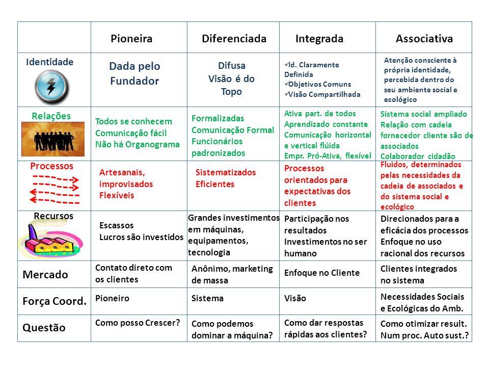 Pioneira Diferenciada Integrada Associativa Dada pelo Fundador Mercado