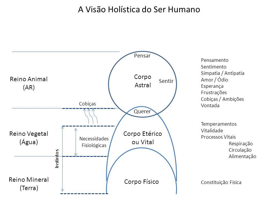 A Visão Holística do Ser Humano