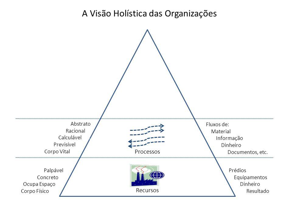A Visão Holística das Organizações