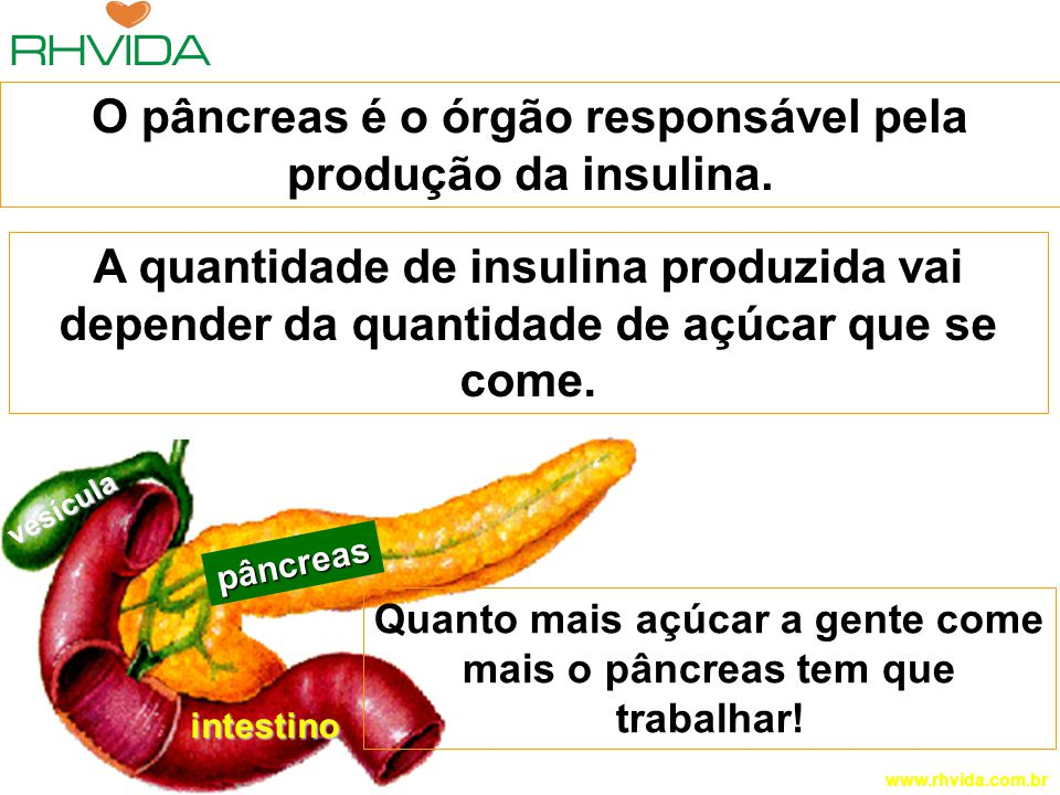 O pâncreas é o órgão responsável pela produção da insulina.