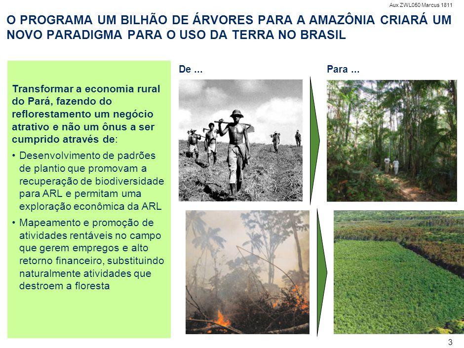 O PROGRAMA NÃO É UMA CAMPANHA DE PLANTIO DE ÁRVORES