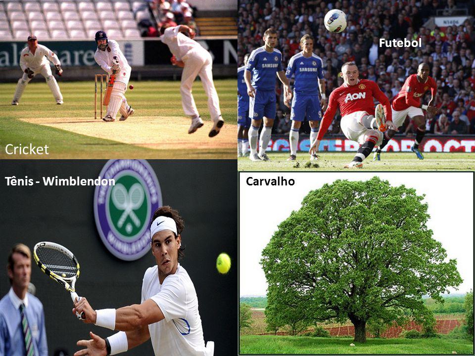 Futebol Cricket Tênis - Wimblendon Carvalho