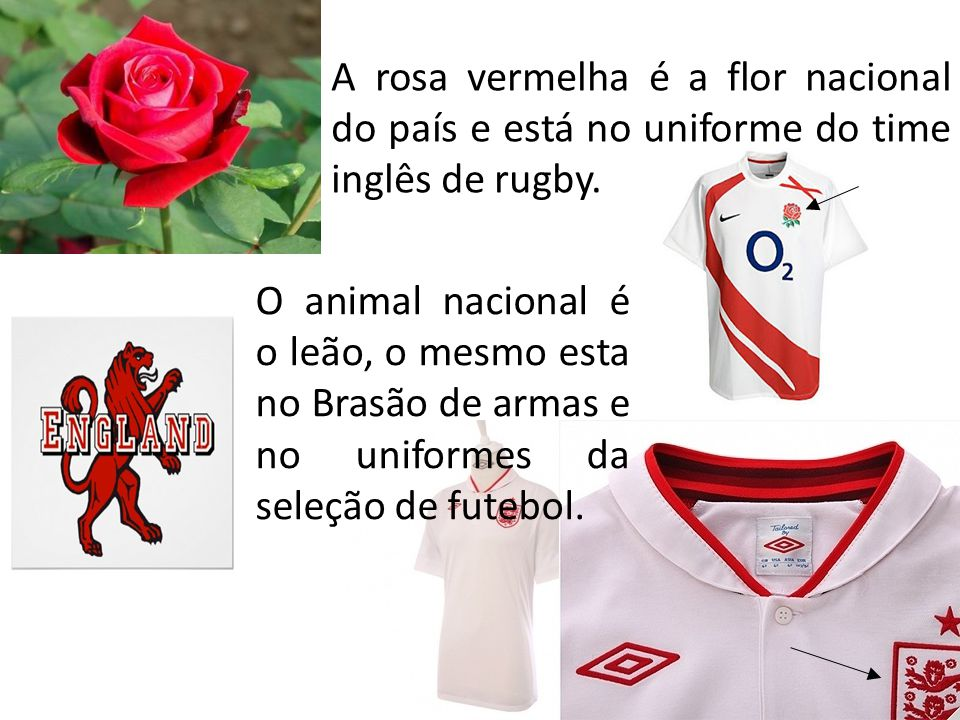 A rosa vermelha é a flor nacional do país e está no uniforme do time inglês de rugby.
