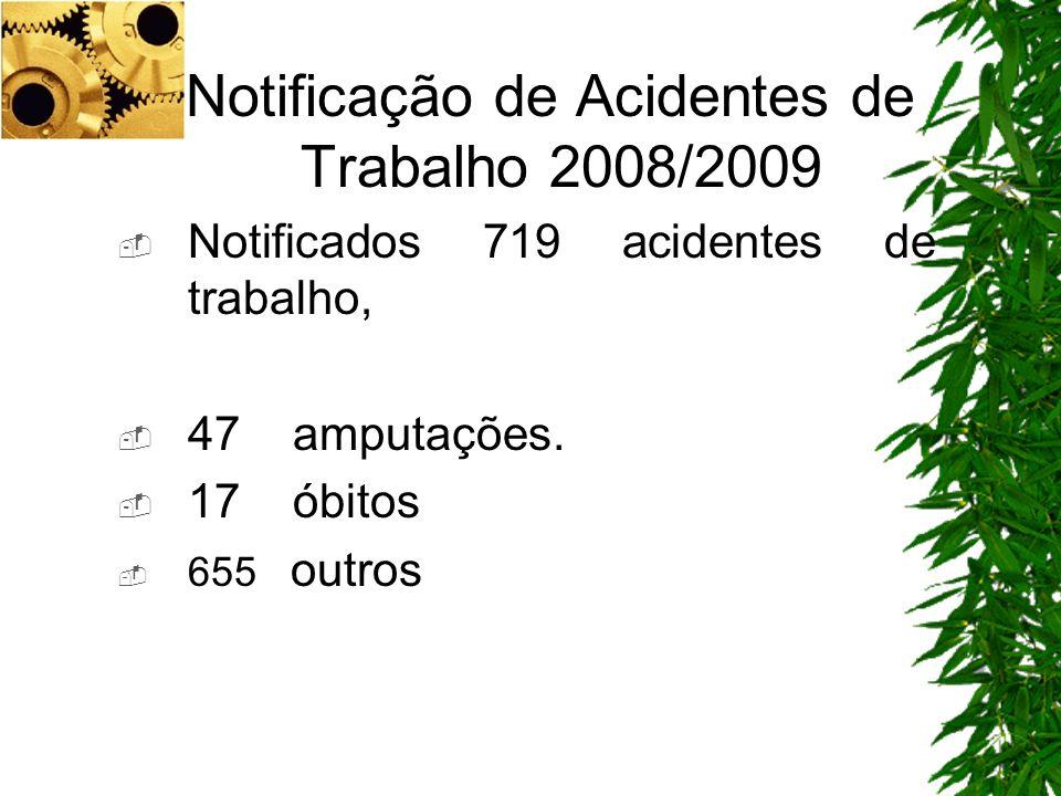 Notificação de Acidentes de Trabalho 2008/2009