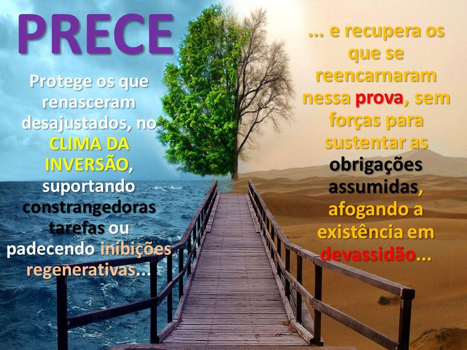 PRECE ... e recupera os que se reencarnaram nessa prova, sem forças para sustentar as obrigações assumidas, afogando a existência em devassidão...