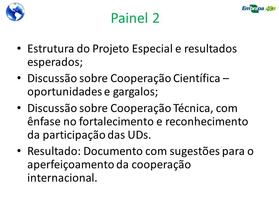 Painel 2 Estrutura do Projeto Especial e resultados esperados;