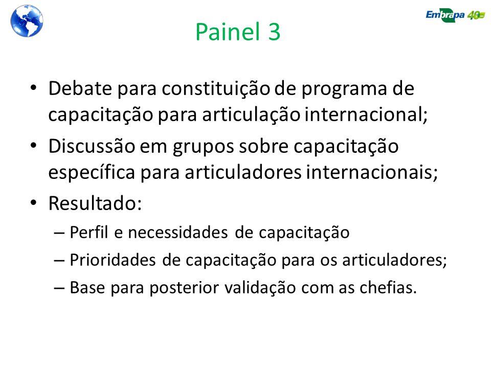 Painel 3 Debate para constituição de programa de capacitação para articulação internacional;