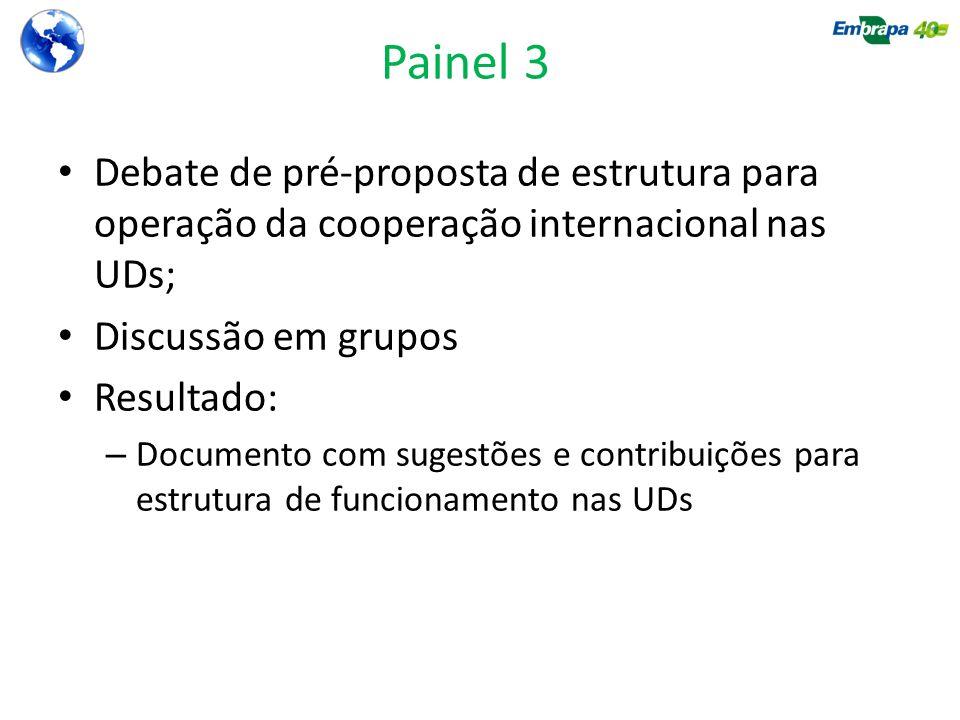 Painel 3 Debate de pré-proposta de estrutura para operação da cooperação internacional nas UDs; Discussão em grupos.